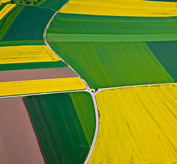 Arial view of colorful crop fields intersected with farm tracks