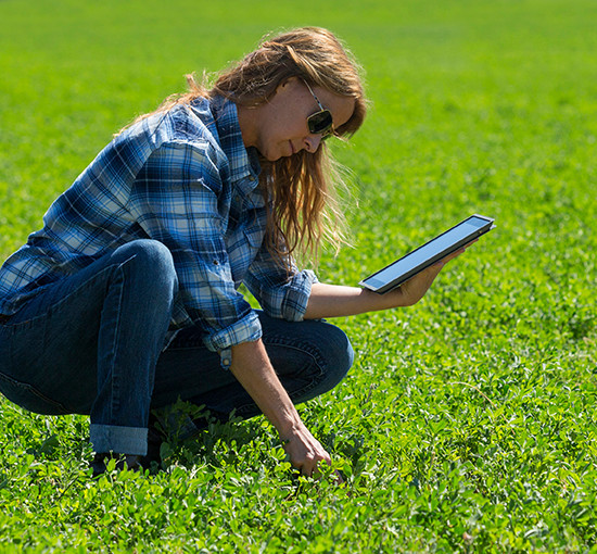 Female farmer with digital tablet crouching in crop field